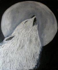 Xau Canis Lupus Animal Nacional da Galiza