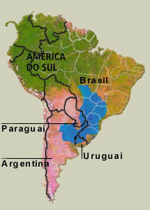 daaeararaquara.com.br