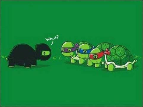 tartarugas-ninja-michaelangelo-certo