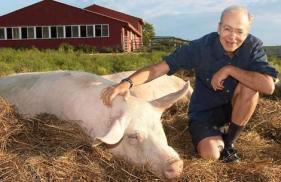 """Libertação Animal"".Peter Singer"