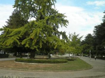Campus Sur USC