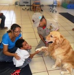 Animalterapia