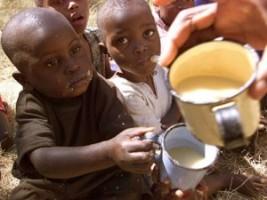 Fome_de_Crianca_da_Africa1-300×225