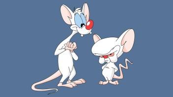 Pinky e Cérebro